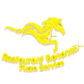 Bonanza Pizza Service pizza