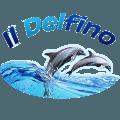 Il Delfino pizza